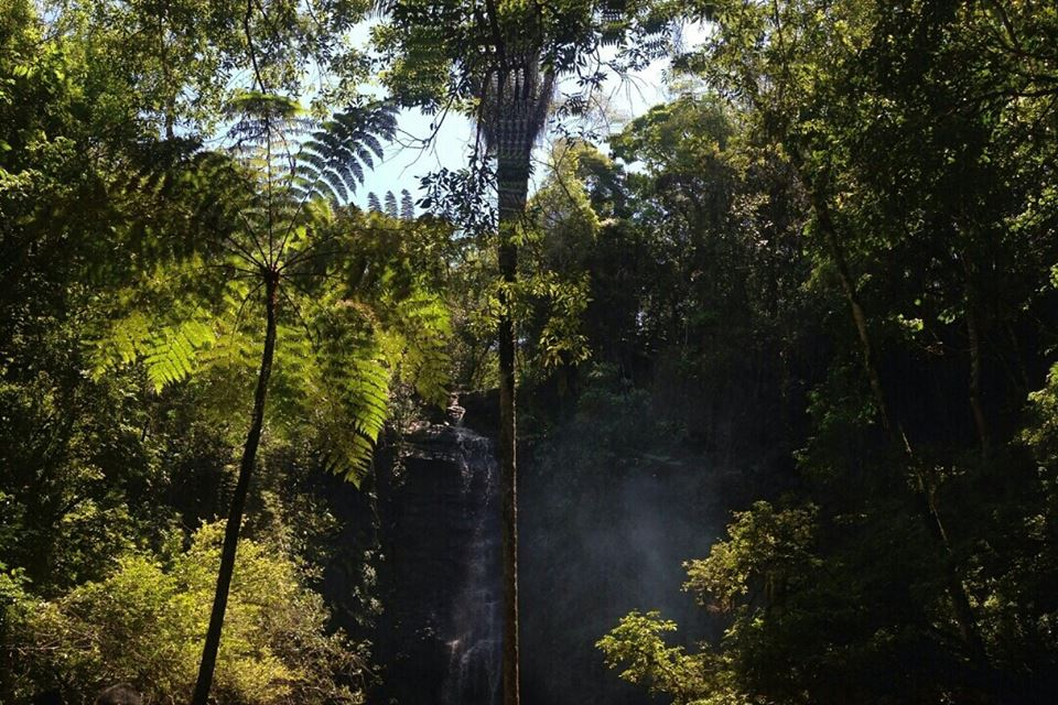 Cachoeira Antares | O que fazer em São Thomé das Letras